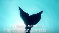 Купить хвост русалки в интернет-магазине (Украина)